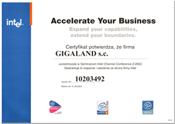 accelerate_your_business